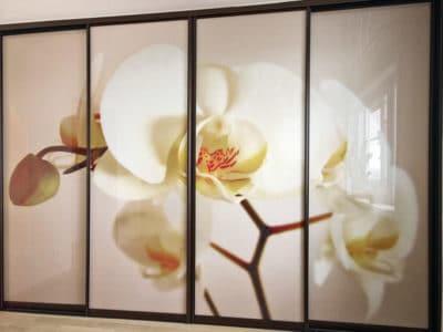 Шкаф-Купе Фотопечать Орхидея